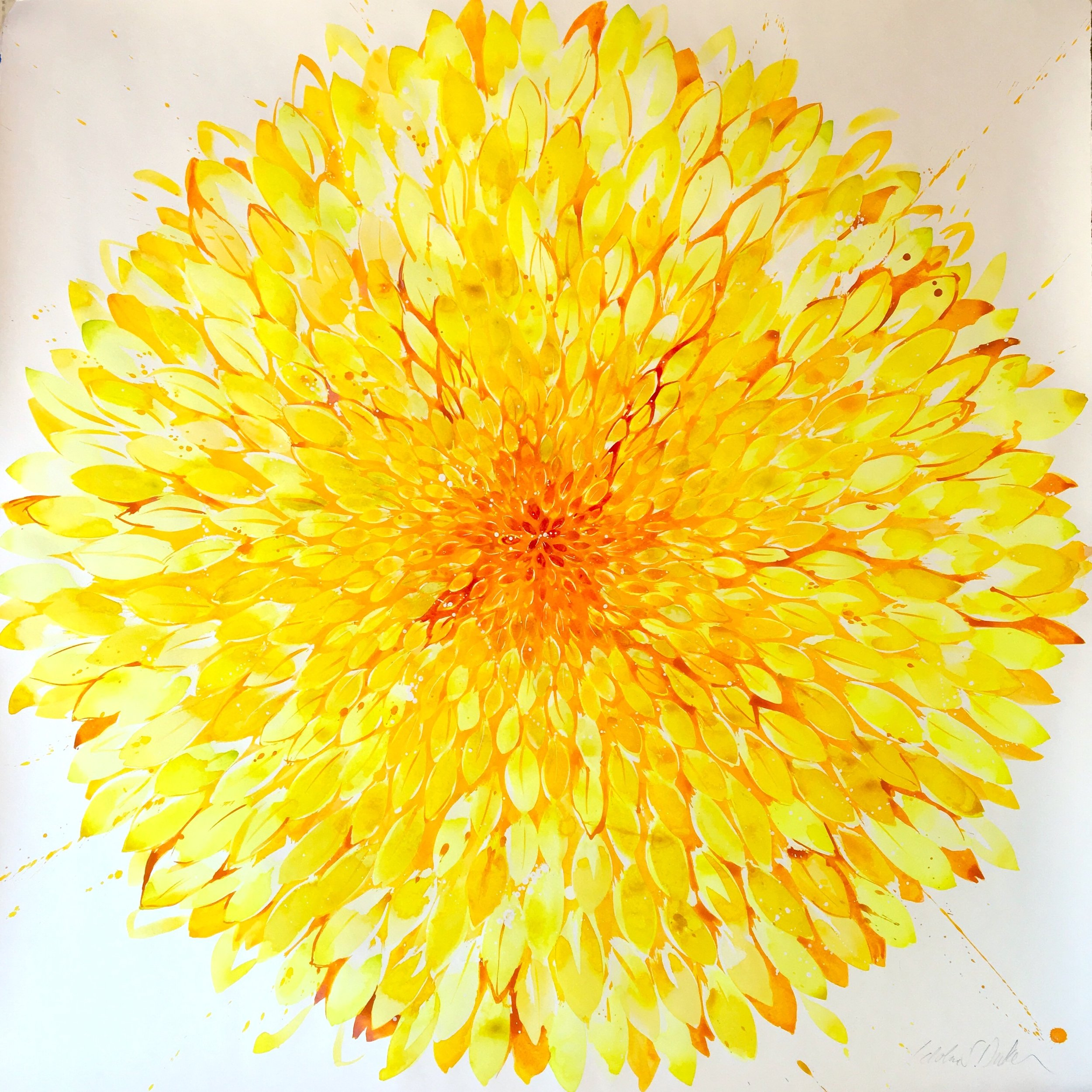 Idoline Duke  Big Yellow Flower,  2019 watercolor on paper 38 x 38 in.