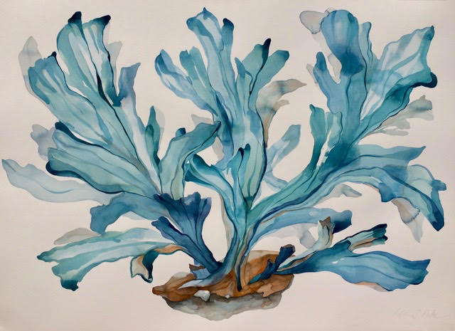 Idoline Duke  Blue Coral Imagined , 2019 watercolor on paper 30 x 41 in.