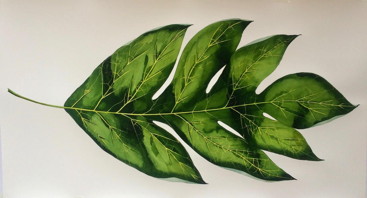 IDOLINE DUKE  Big Breadfruit Leaf,  2019 watercolor on paper  26 x 50 in.