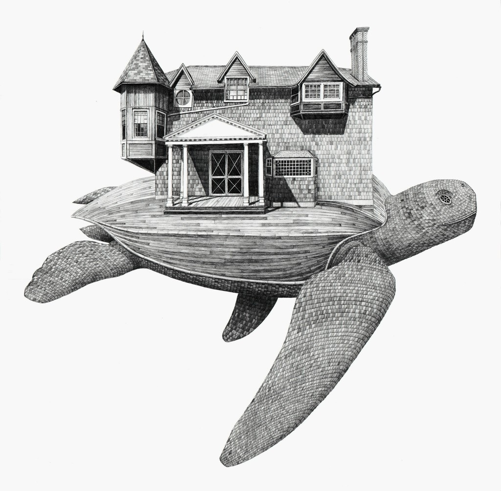 Scott Bluedorn  Moran's Turtle , 2017 archival digital giclee print on cotton rag paper 24 x 24 in.