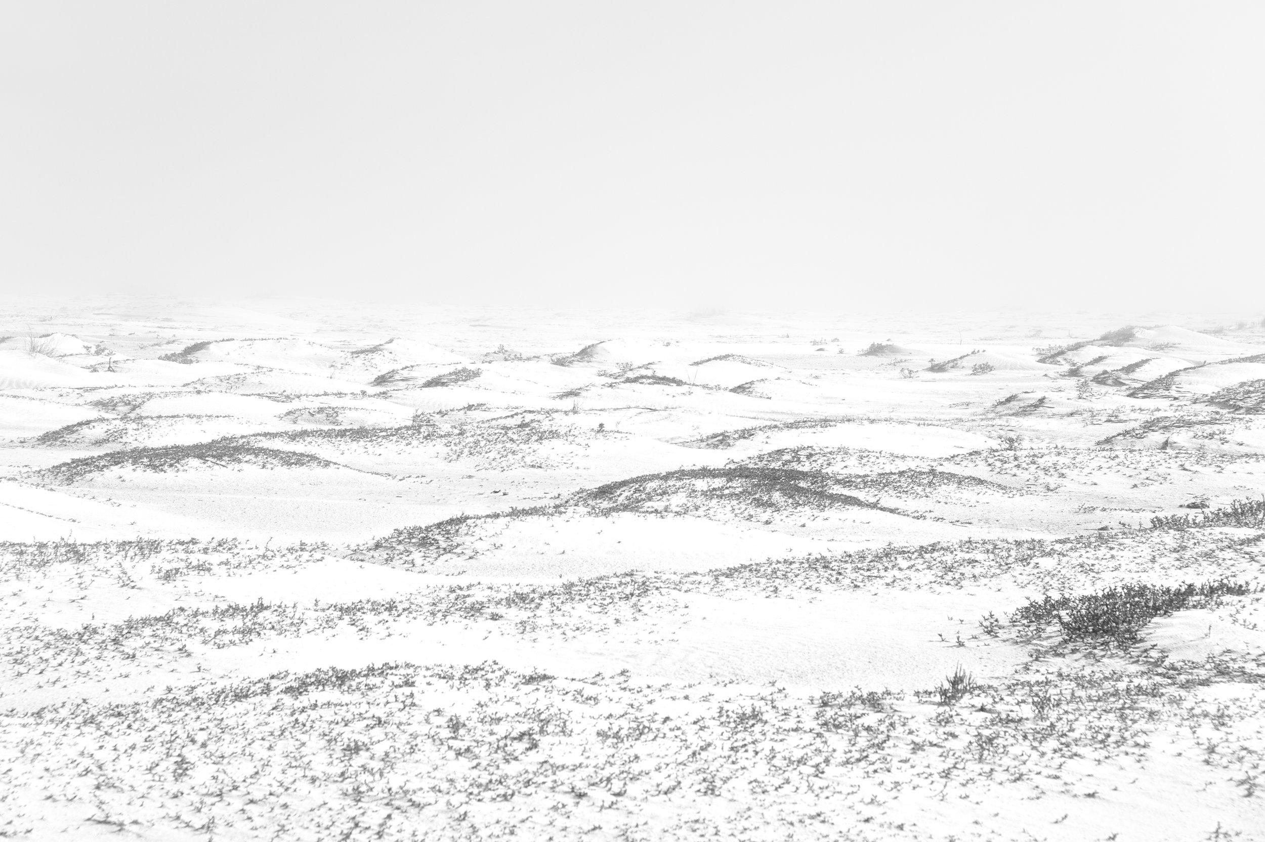 Anouk Masson Krantz  Dune  print on bright white matte pigment paper