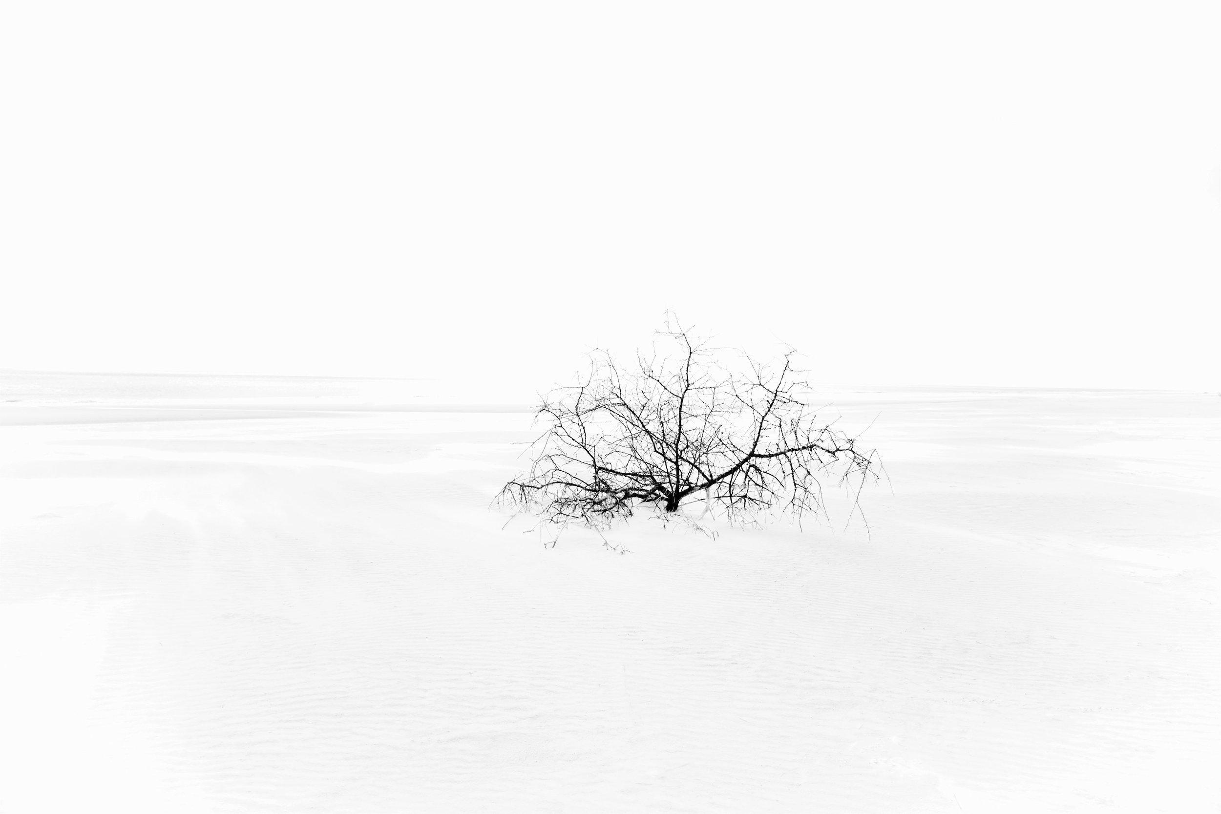 Anouk Masson Krantz  Sandstorm  print on bright white matte pigment paper