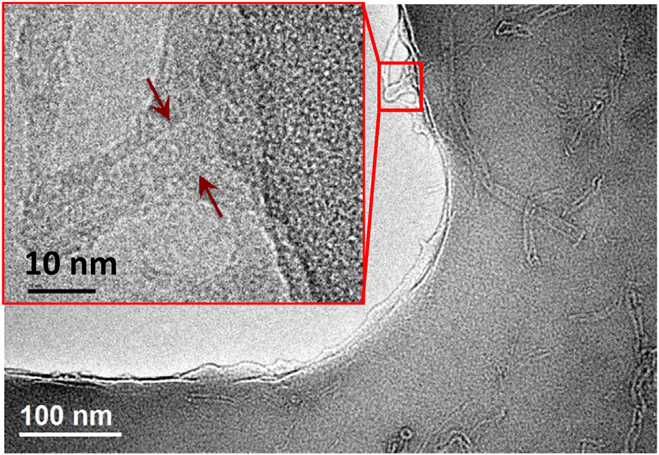First observation of fracture of carbon nanotube in active fracture zone for epoxy composite. Carbon nanotubes were electrostatically tethered by ZrP nanoplatelets, resulting in a unique improvement in strength, stiffness, and fracture toughness of epoxy nanocomposite. Image from paper by White and colleagues, published in  Polymer  2016 vol 84, page 223-233.