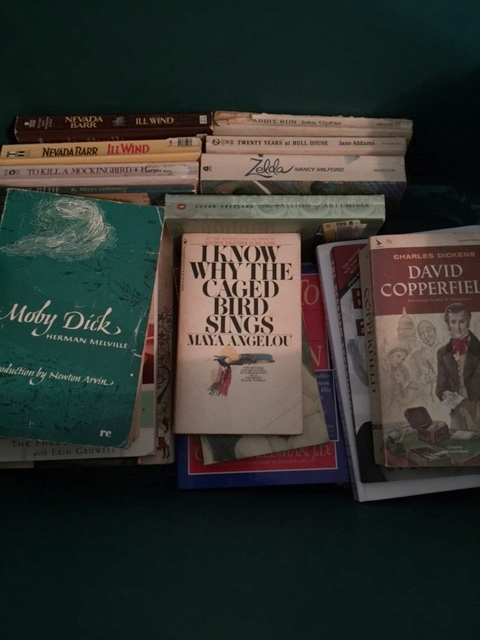 Books your high school English teacher would be proud you have read!