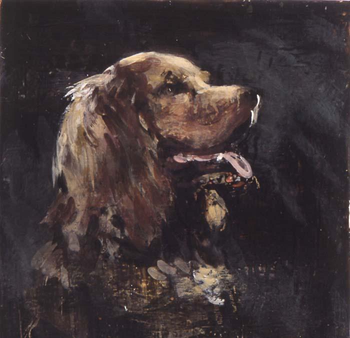 Wellington's dog