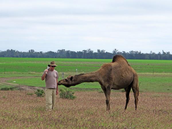 Paul and camel.jpg
