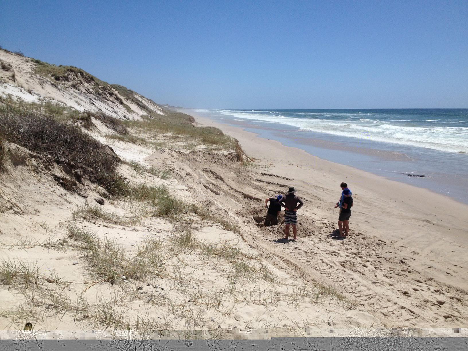 Behind-dune.jpg
