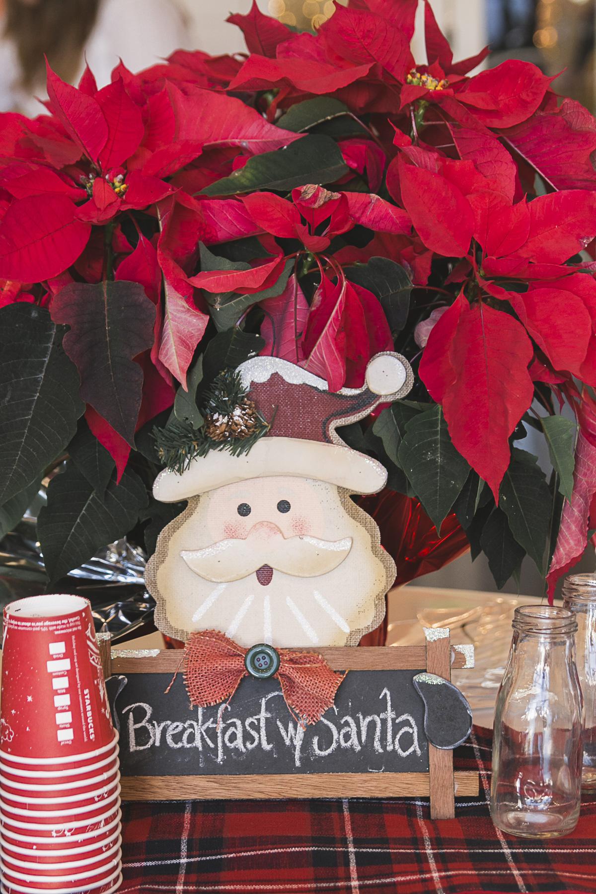 shawna-parks-photo-Santa-03.jpg
