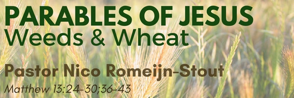 wheat_2_orig.jpg