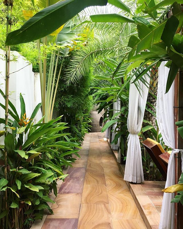 Lush greens at @palacegatepp 🌿💚