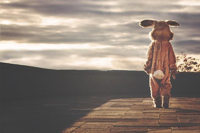 rabbit-542554_640.jpeg