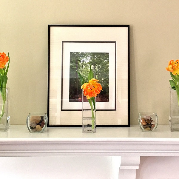 mantel_decor_photography_apex.JPG