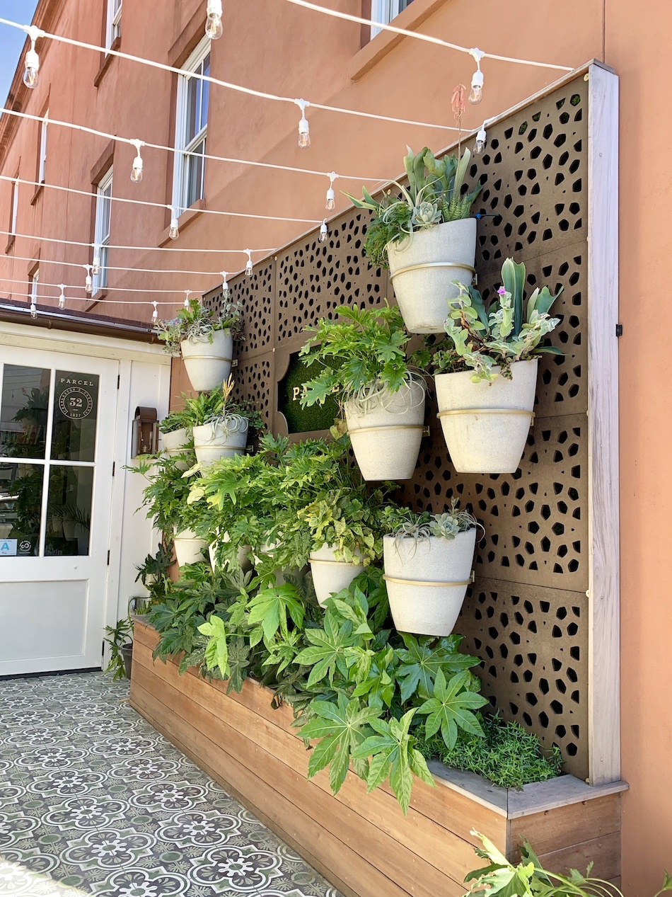 charleston-plant-wall