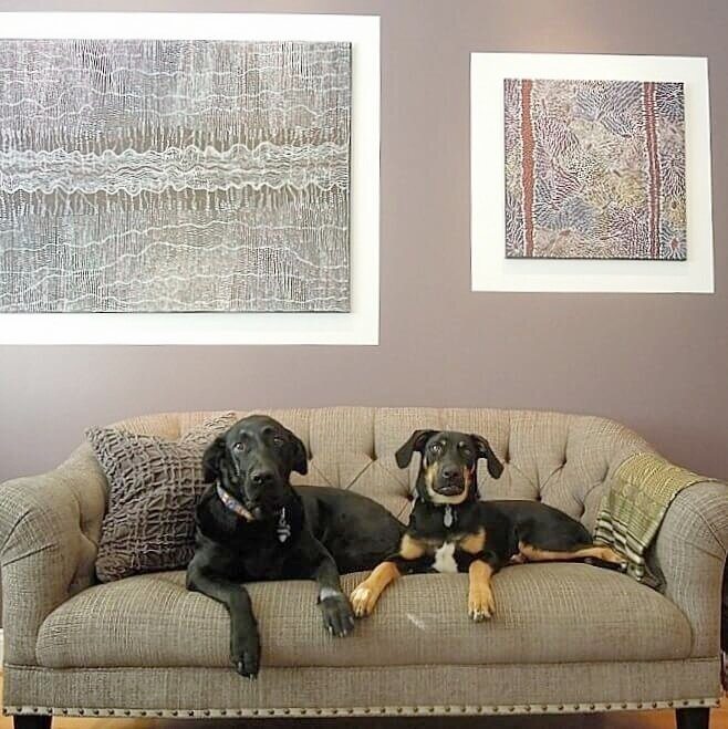 We love dogs (and cats!) at DeCocco Design. Contact us to find the best interior designer in Raleigh NC.