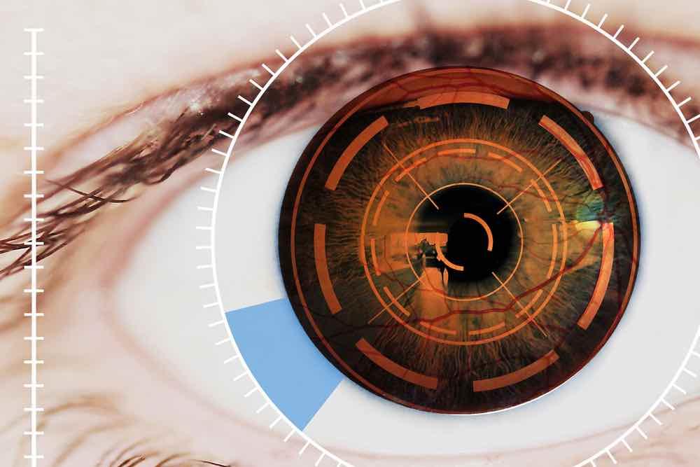 retina2.jpg