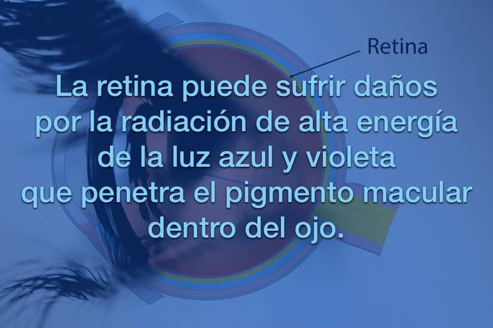 retina4.jpg