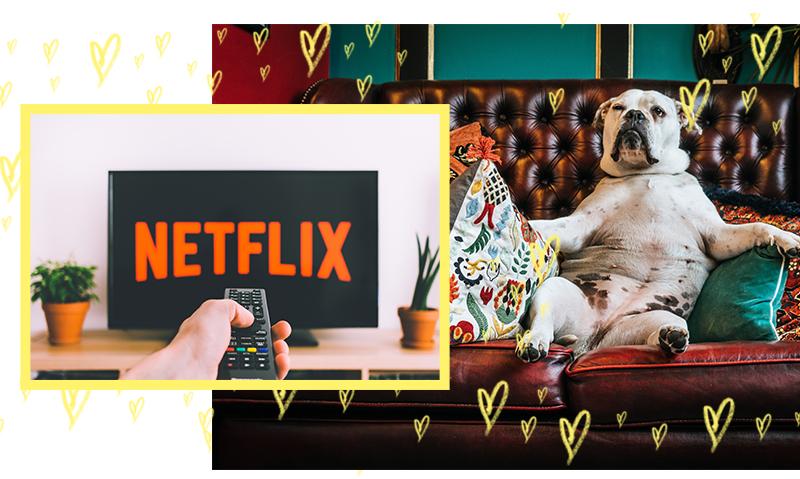 netflix-the-vurger-co-blog.jpg