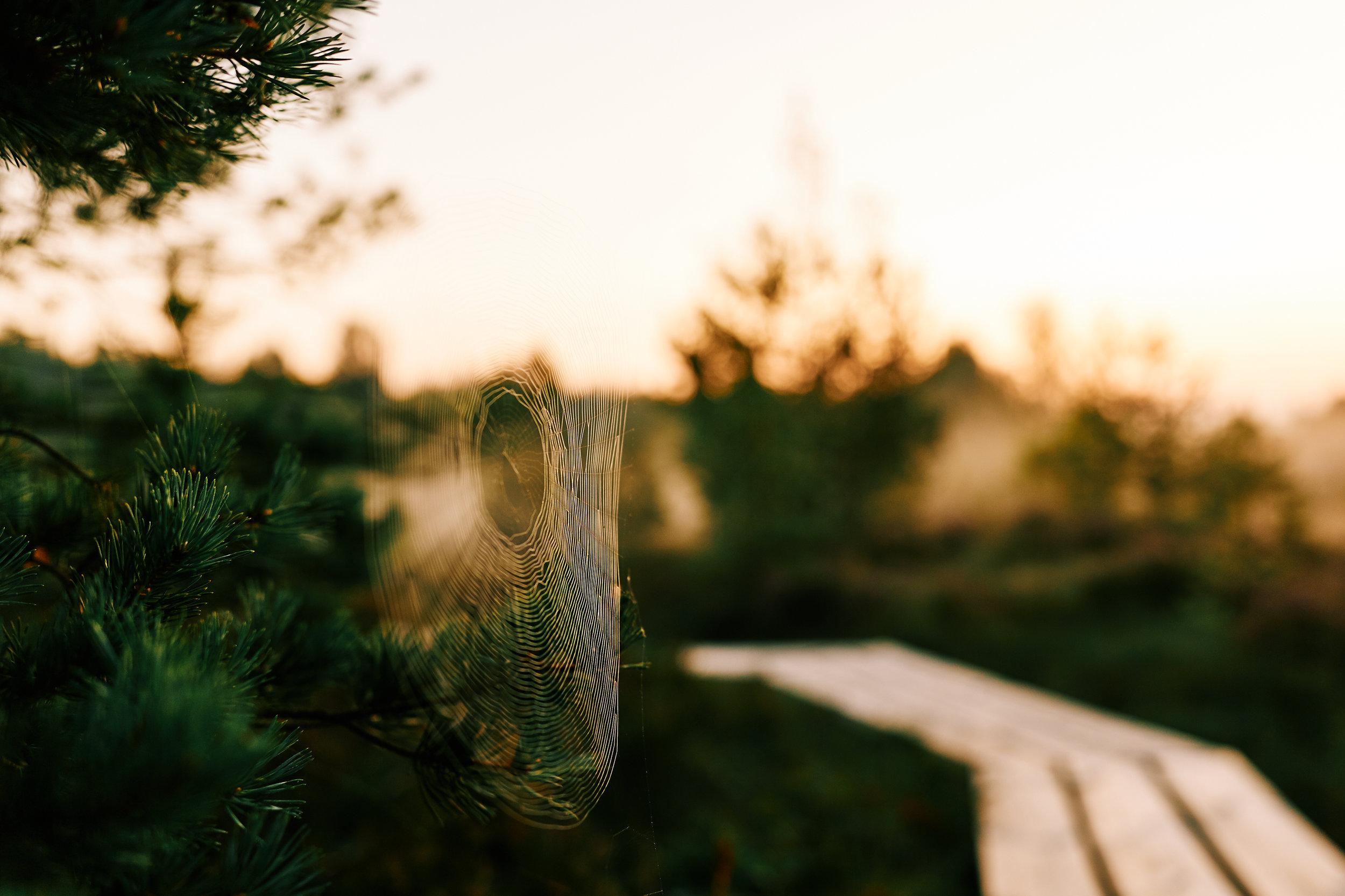 0006 www.skutelisfoto.com.jpg
