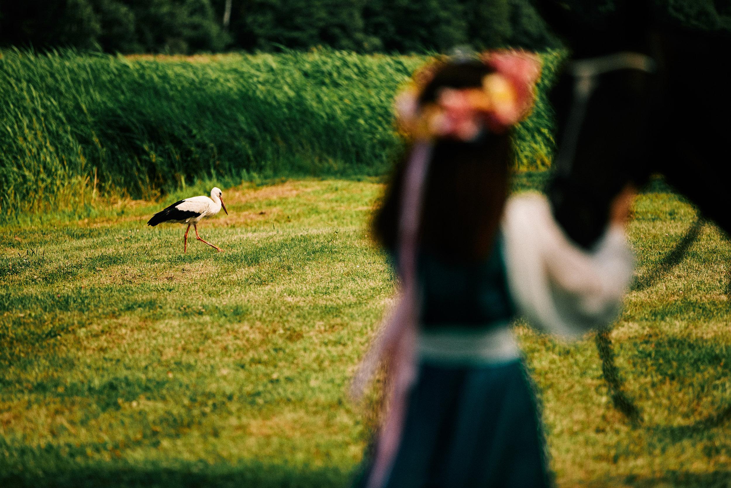 0008 www.skutelisfoto.com.jpg