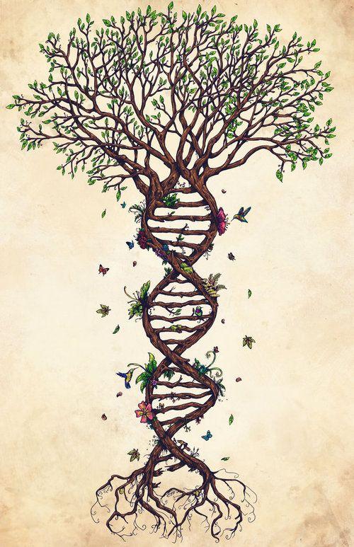 ancestral healing 2.jpg