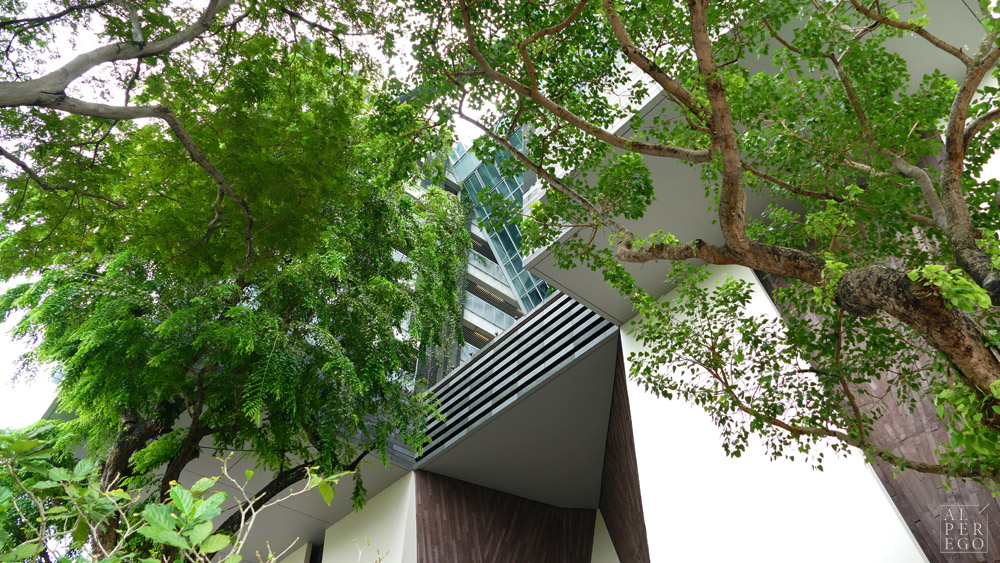 sota-singapore-19.jpg