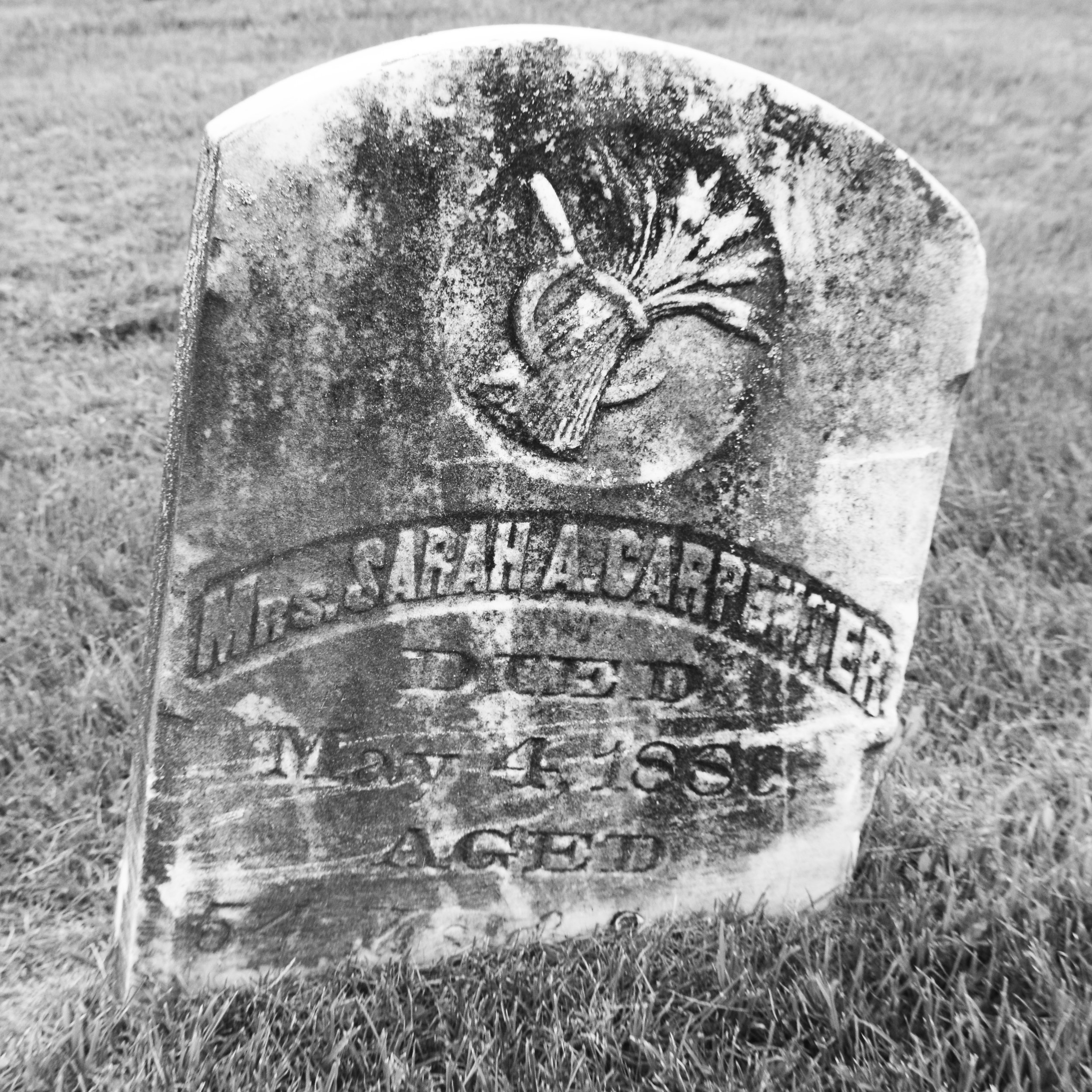 Mrs. Sarah A. Carpenter. Died May 4, 1888, aged 54. Coopersville-Polkton Cemetery, Michigan.
