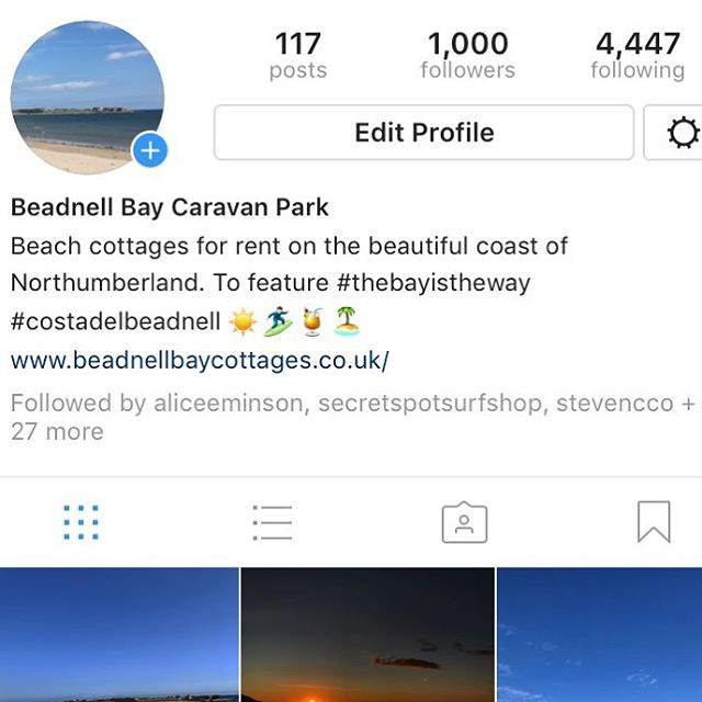 Thank you for helping us reach 1000 followers 👏 to show our gratitude we are gifting something free of charge..... #getlost in nature, take a walk along our beautiful beach, it's for free #thebayistheway