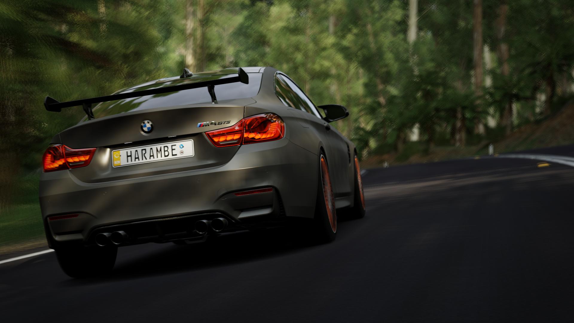 Forza Horizon 3 (30).png