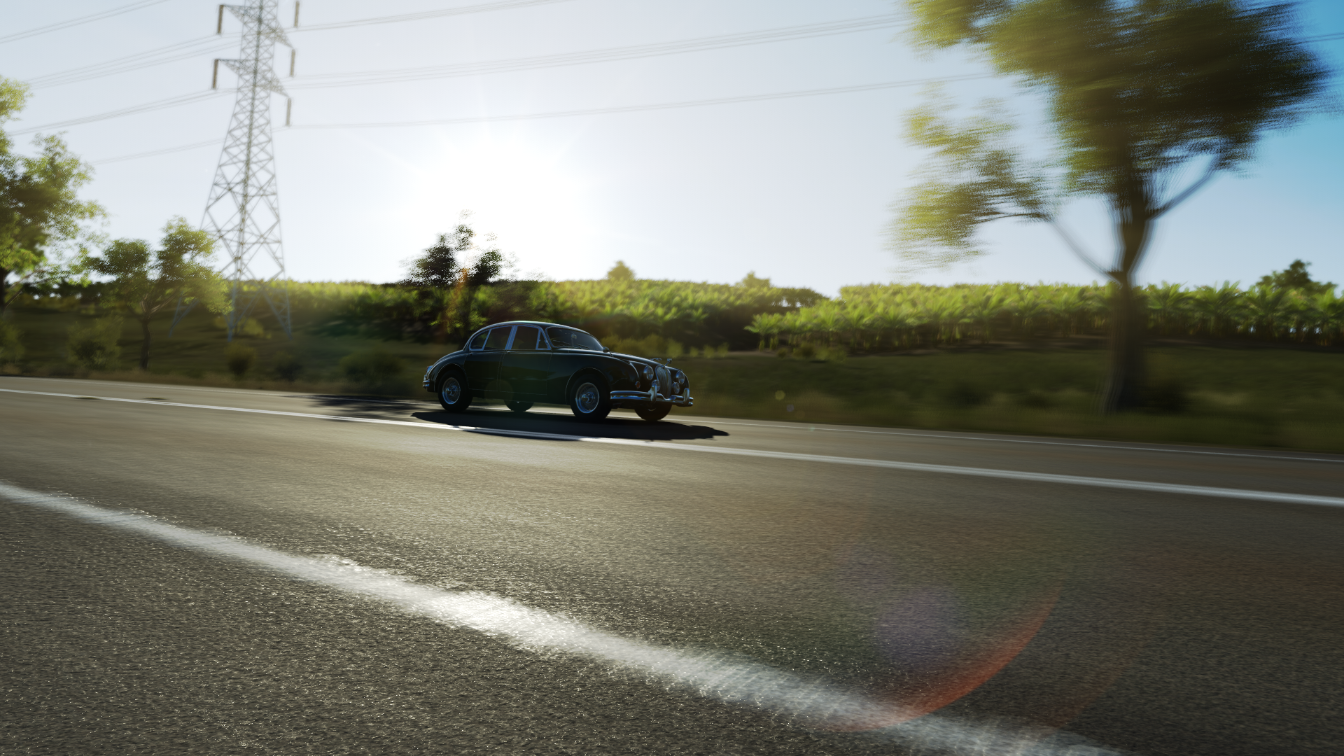 Forza Horizon 3 (107).png