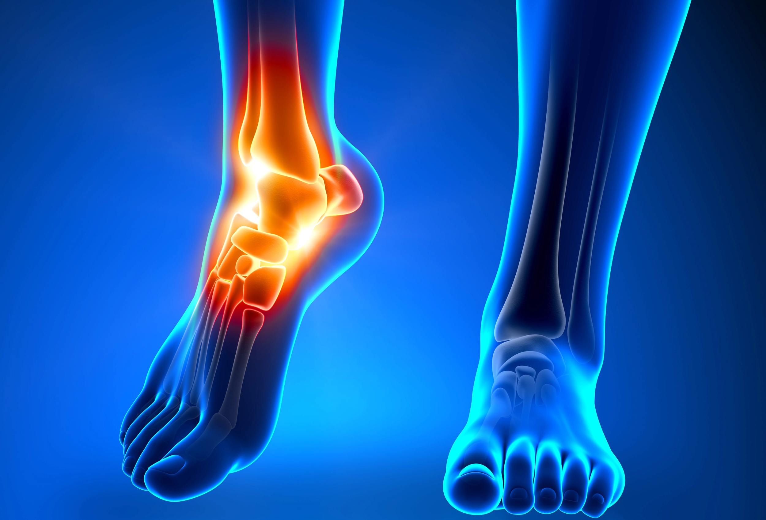 Ankle Image.png