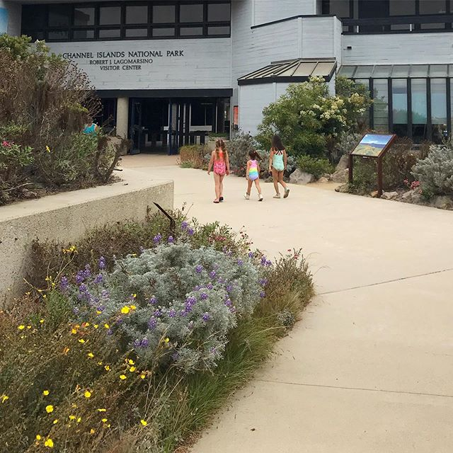 🐳 Warm days are for going to the beach followed by a walk to the Channel Islands National Park visitors center! 🐠