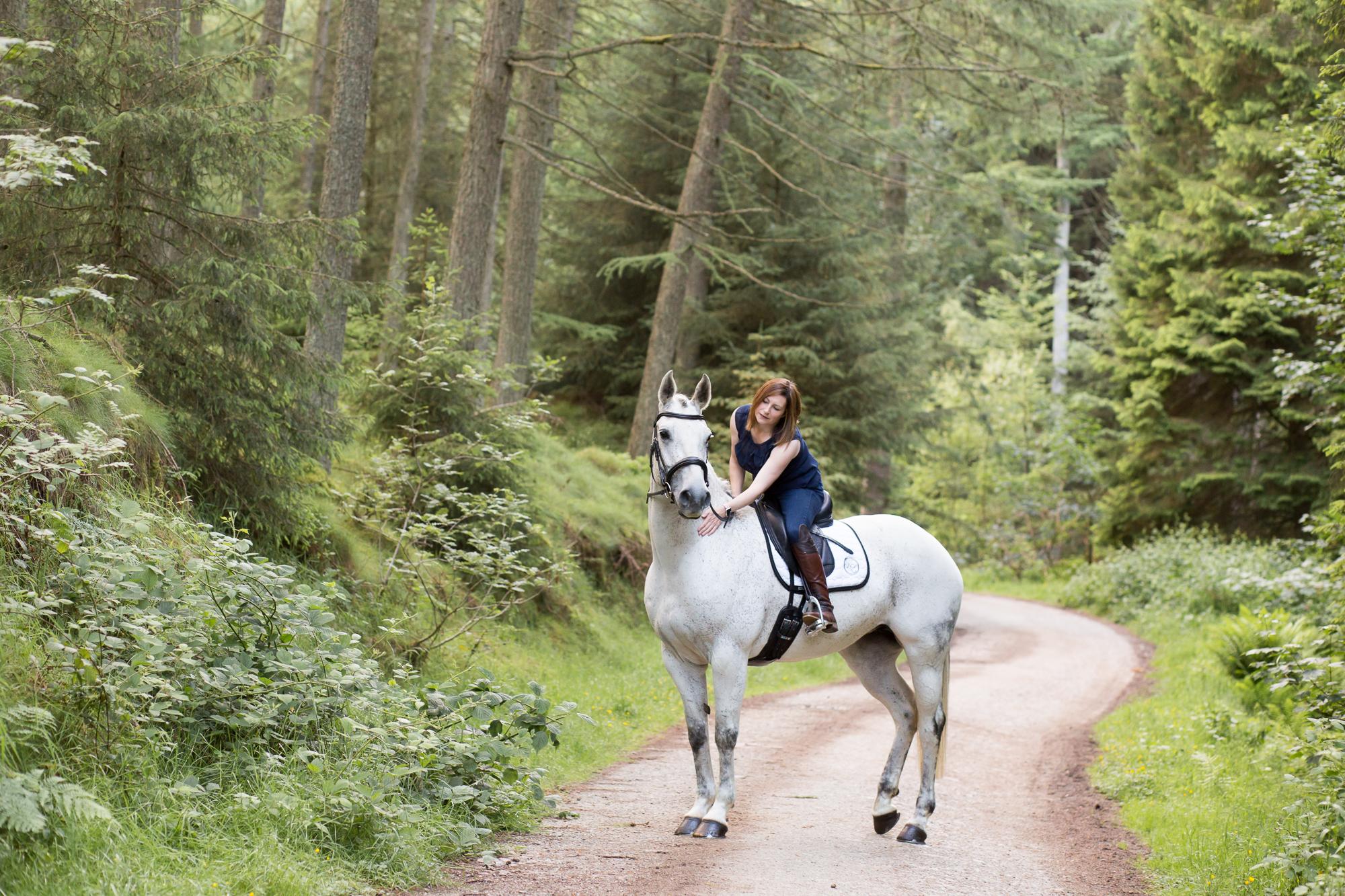 equine photographer aberdeen, horse photographer Aberdeen, equine photography Aberdeenshire, Vivienne elizabeth photography, horse photos Aberdeen, kirkhill forest,