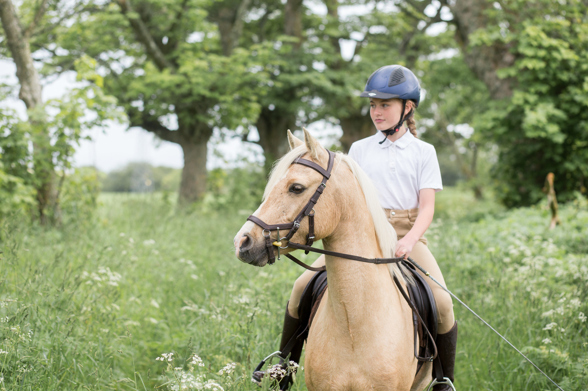 horse riding Aberdeen