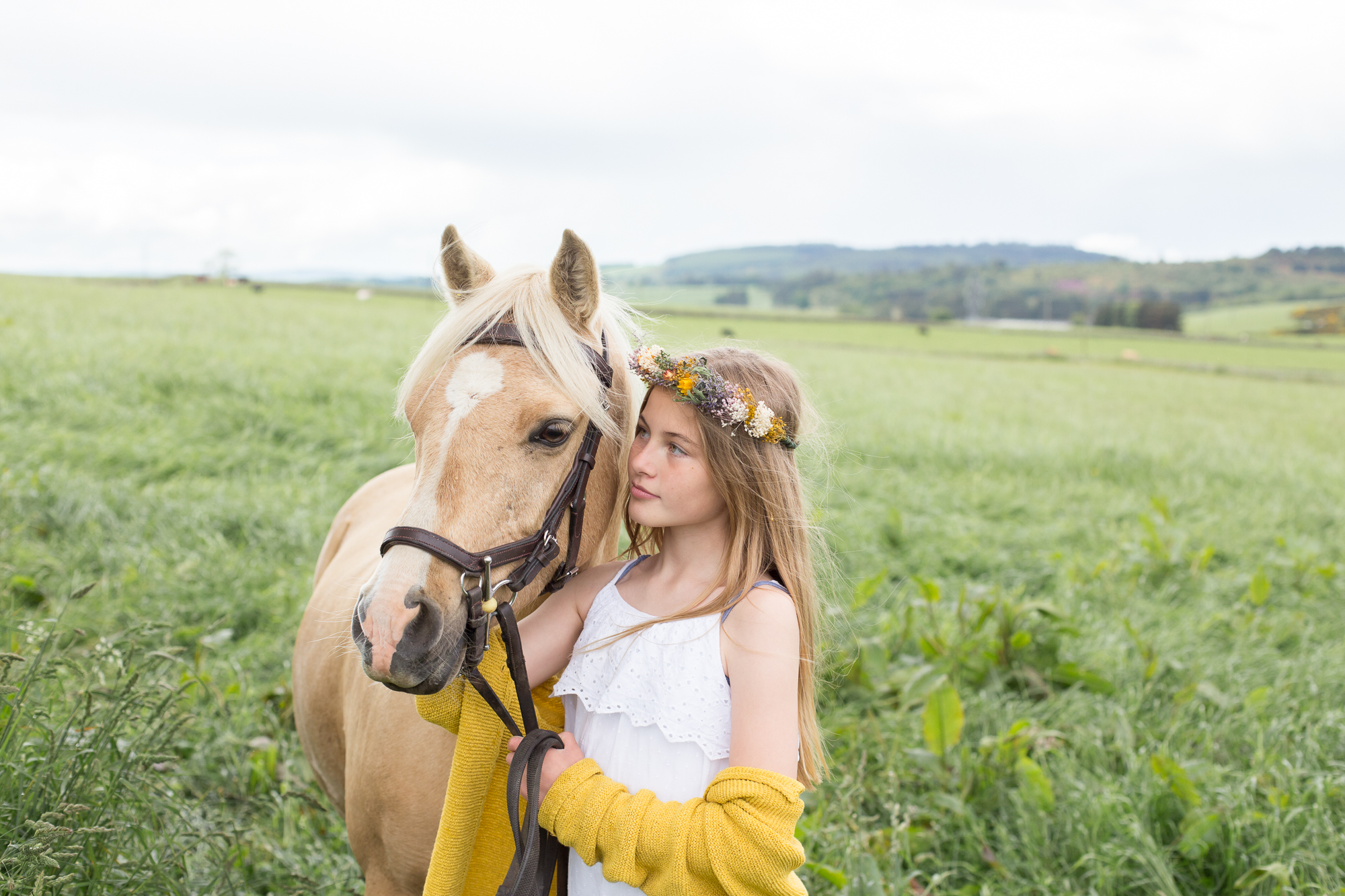 equestrian photography Aberdeen