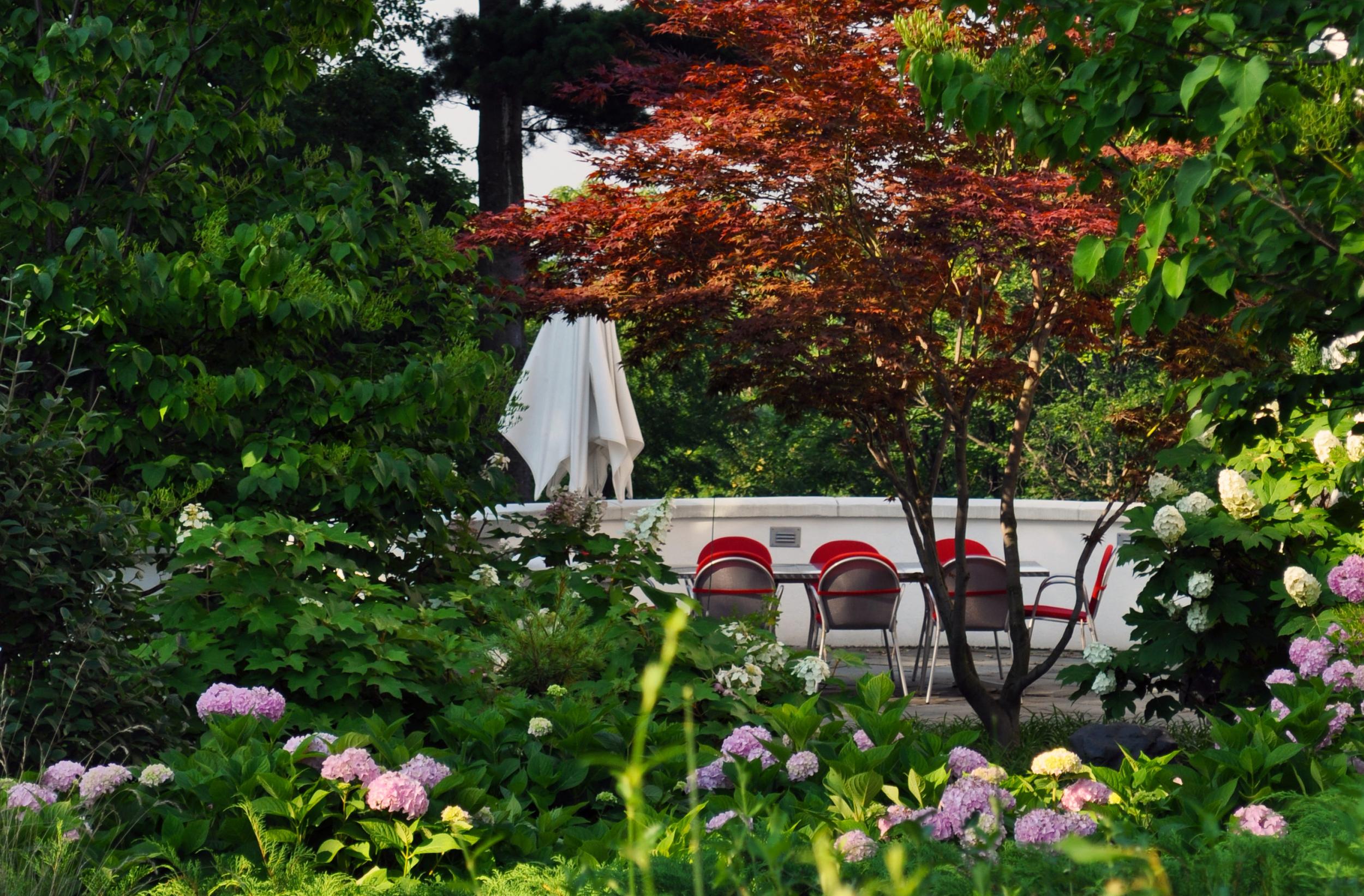 Hilltop House   2011 NYU-ASLA Merit Award, Residential Design
