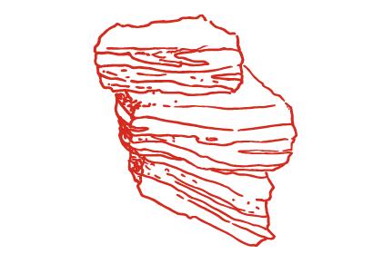 short-ribs.png
