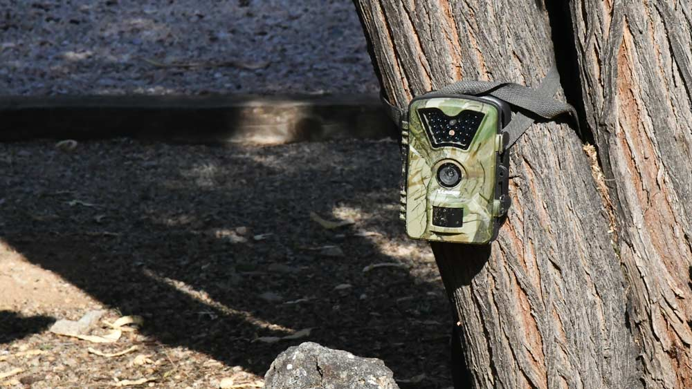 Game Trail Camera