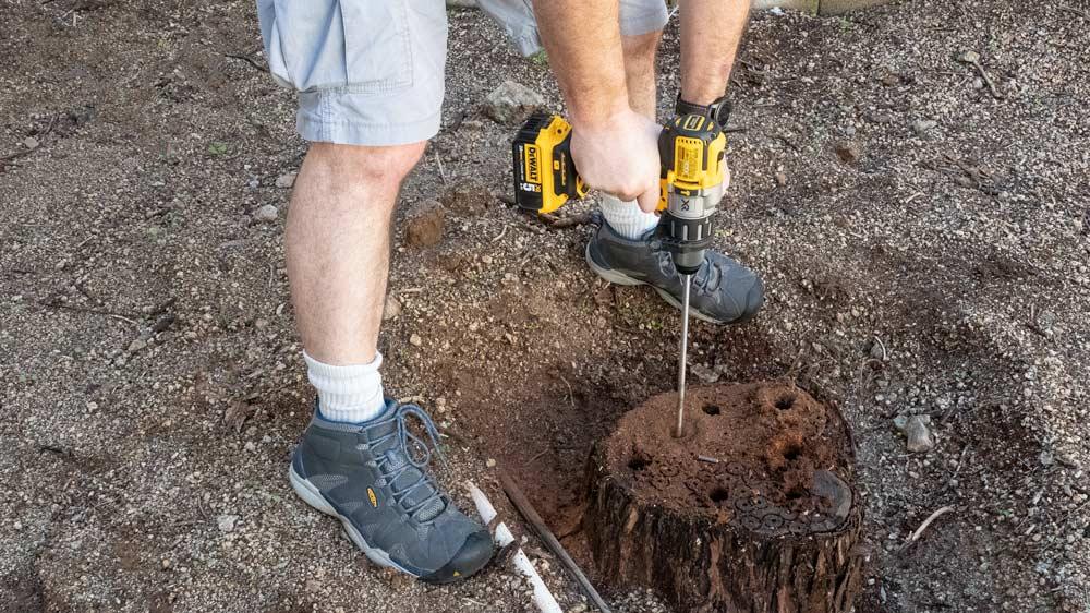 03-stump-drilling.jpg