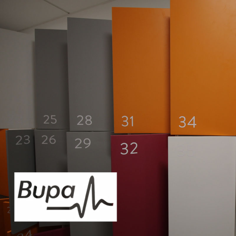 project_example_bupa.jpg