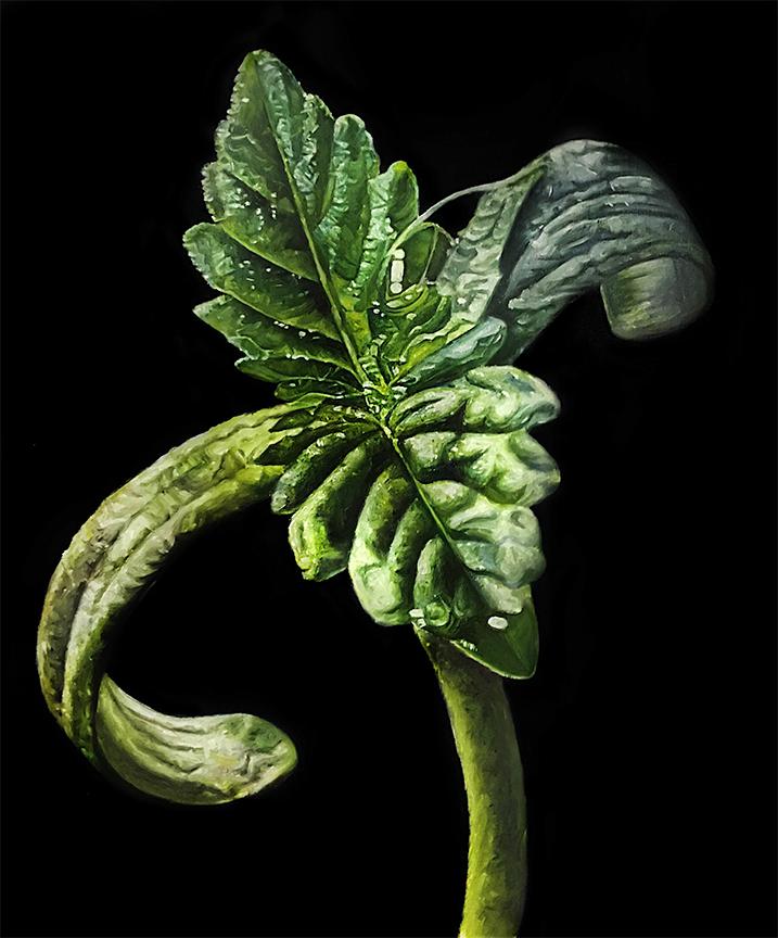 Seedling #2