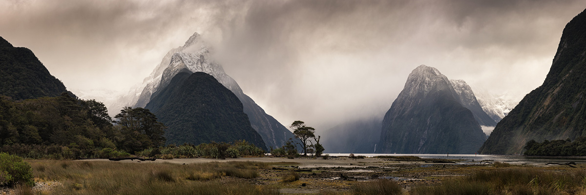 Moody, Mystical, Magical Milford Sound