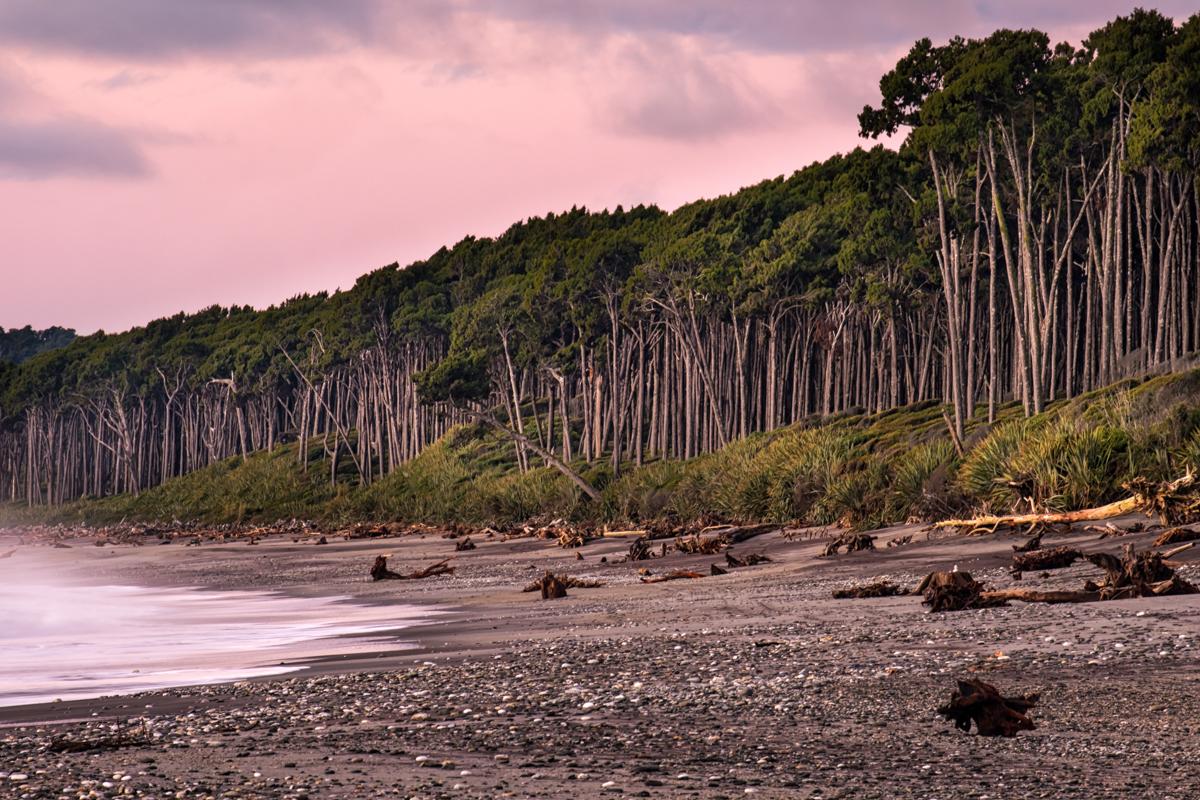 Windy Bruce Bay