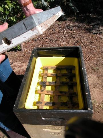Top tray feeder with floating platform – this will allow the bees to feed without drowning