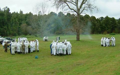 Some of the 120 beekeepers at the Buzz Weekend, checking hives. Smoke from a 'fogger' (used to treat hives with mineral oil against Varroa) can be seen in the background