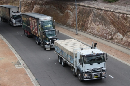 Lead trucks in the 40+ strong 'bee truck convoy' which paraded through Canberra and around Parliament House as part of the campaign on March 2 to convince Federal Government to fund a continued eradication programme for the Asian bee incursion in Qld