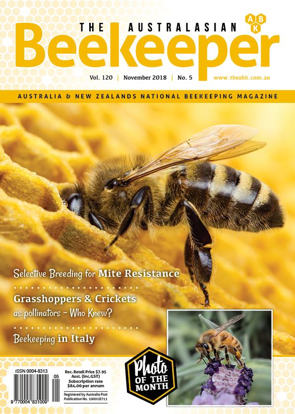 #120_5 ABK Doc - Cover - (Web).jpg