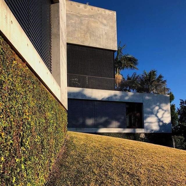 Another image of the Balmoral house for good measure. Clients like these are rare and cherished! #australianarchitecture #modernarchitecture #concrete #balmoral #balmoralbeach #sydney #sydneyarchitecture