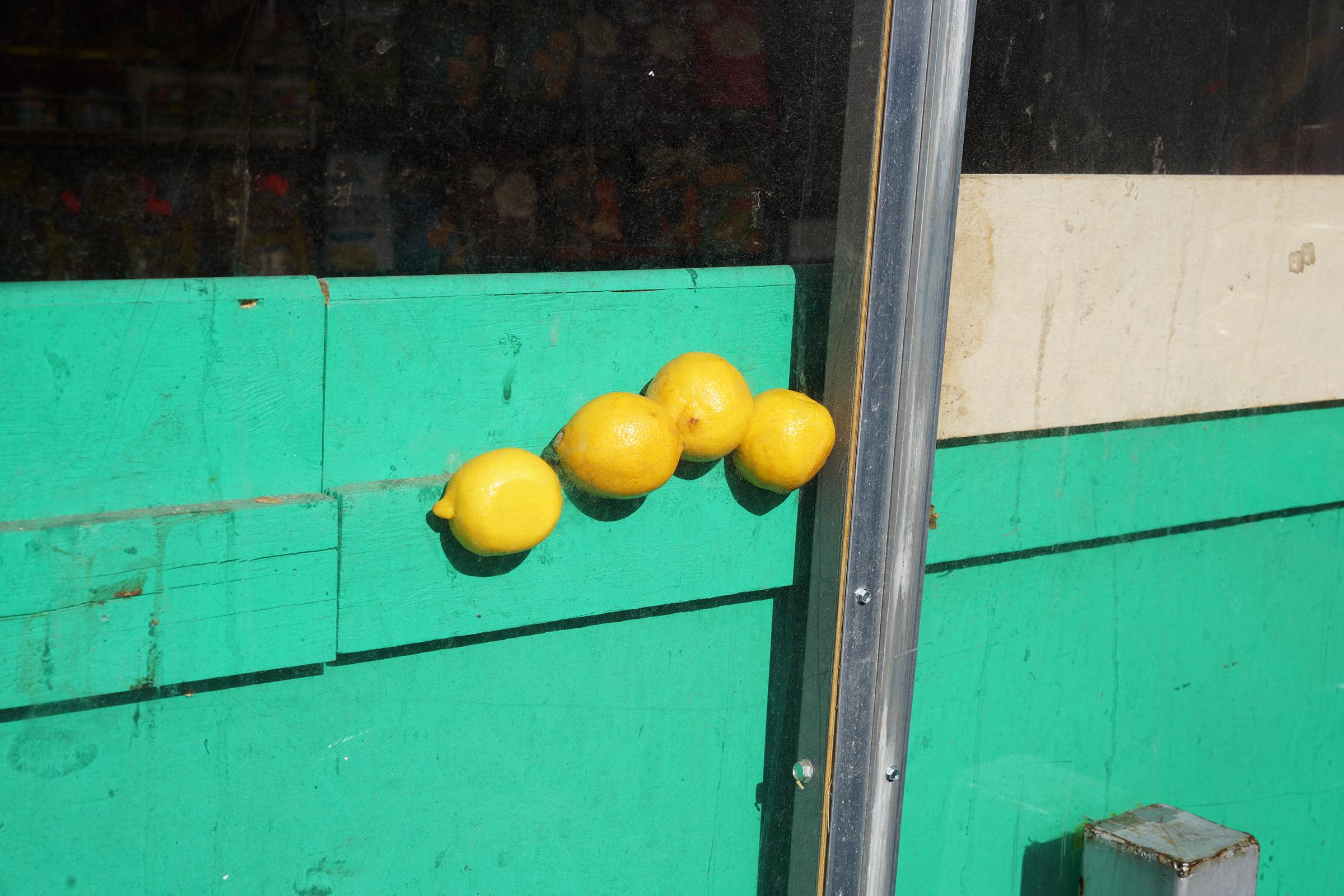 lemonsDSC09520.jpg