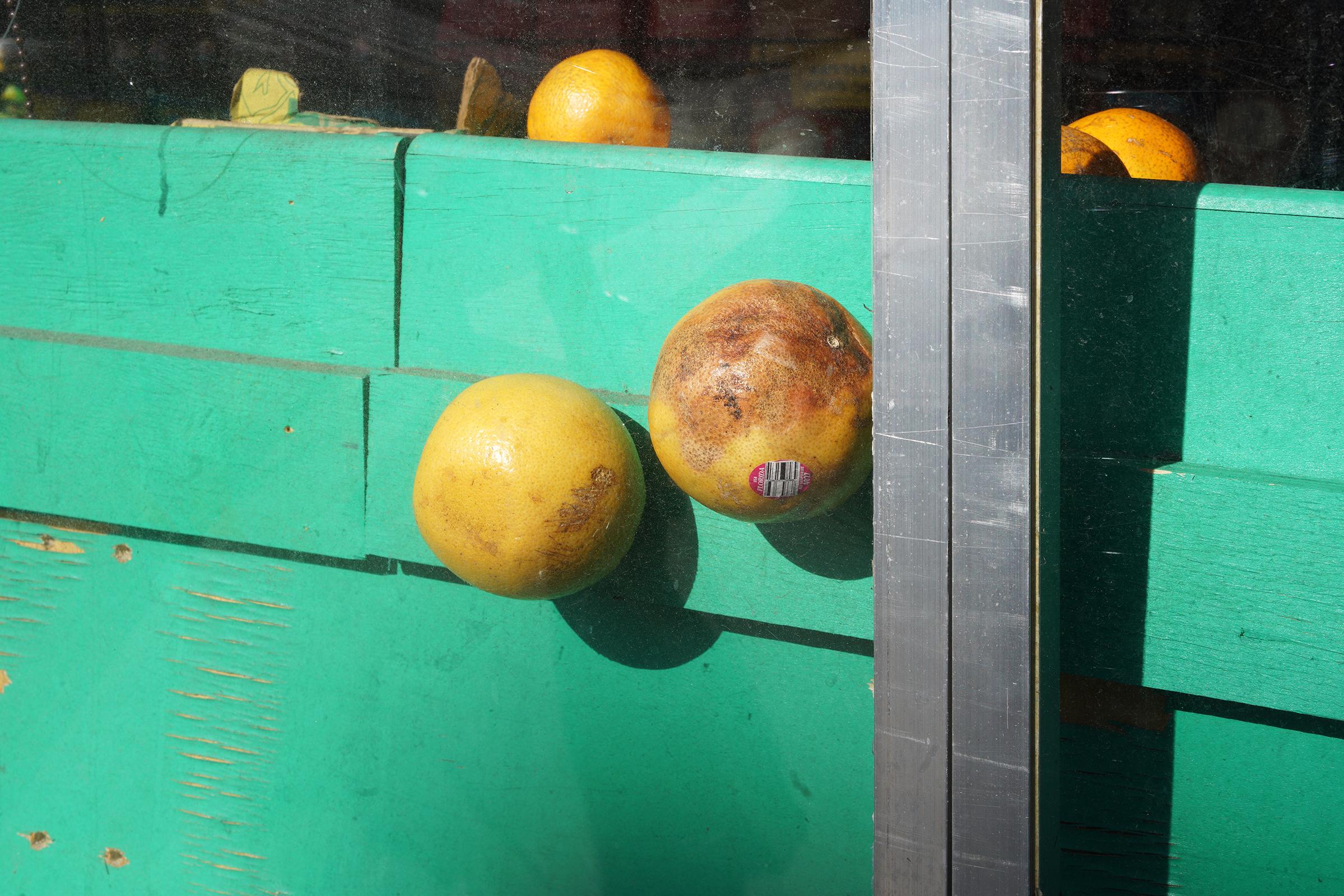grapefruits1600.jpg