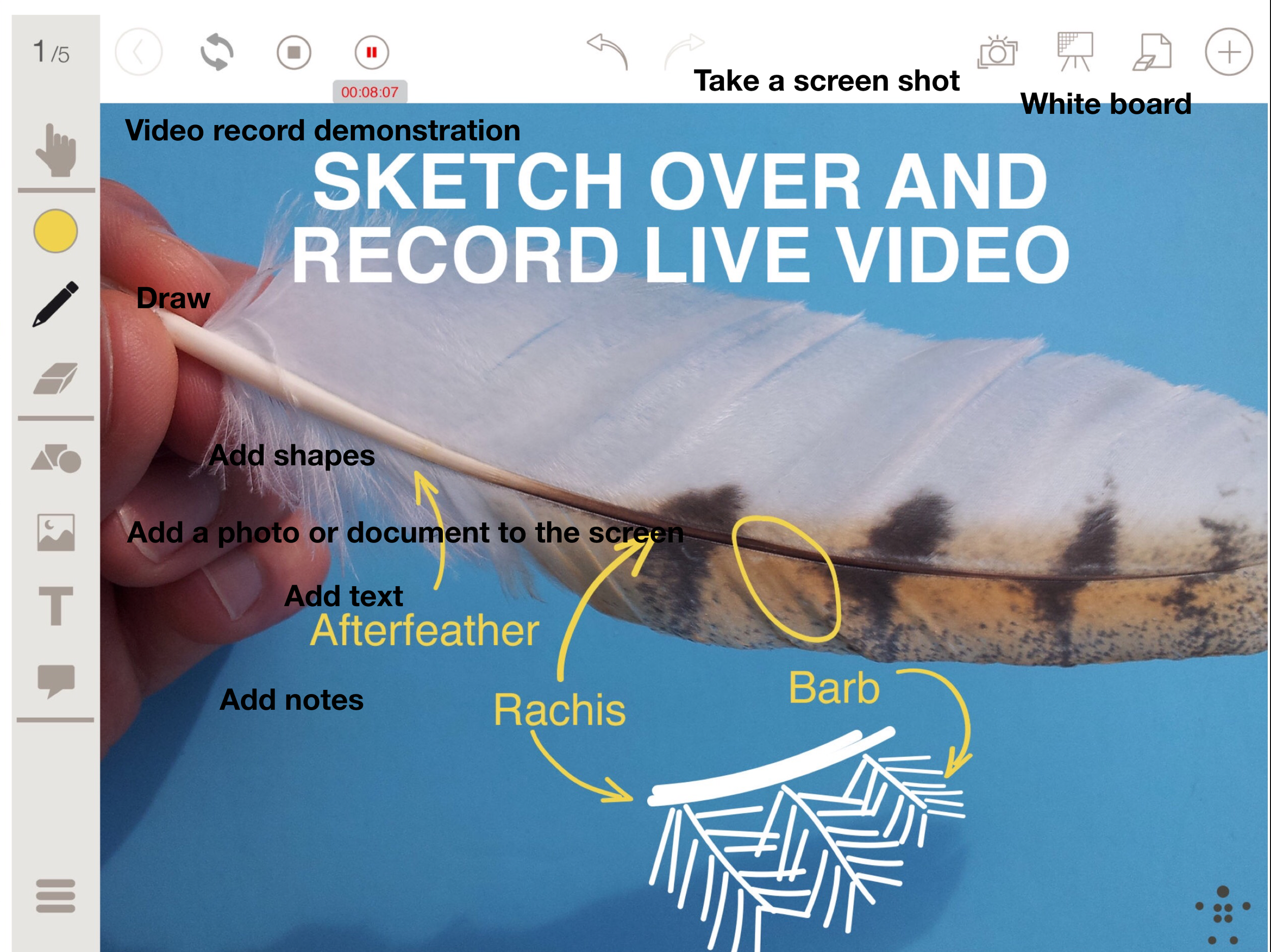 Stage Pro app - This $5.00 app gives you so much more than just a live image.  You can add a document to your screen and use the pen to draw connections between an item and something described in writing.  You can bring up a white board and simply draw on it.  Use your imagination and find ways of connecting your visual content to your audience.